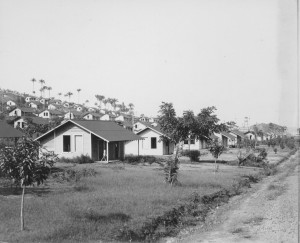 Fordlandia Houses