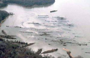 Mallows Bay ships