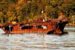 mallows bay old boat