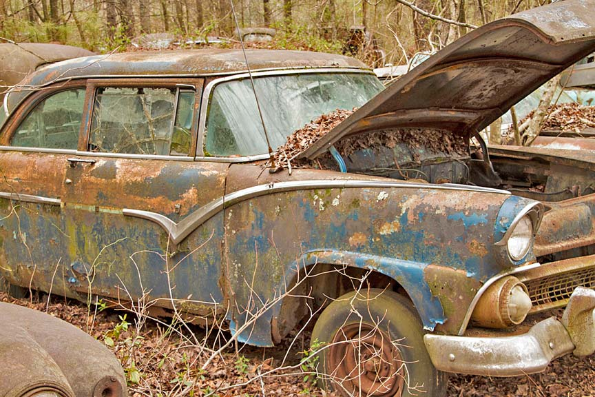 Forest Junkyard for Old Classic Cars in Georgia, USA