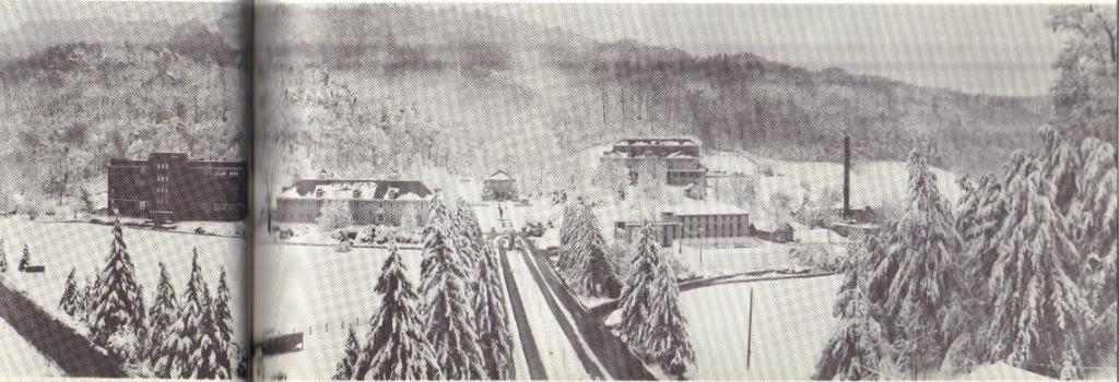 Pressmens-Home-Winter-Panorama
