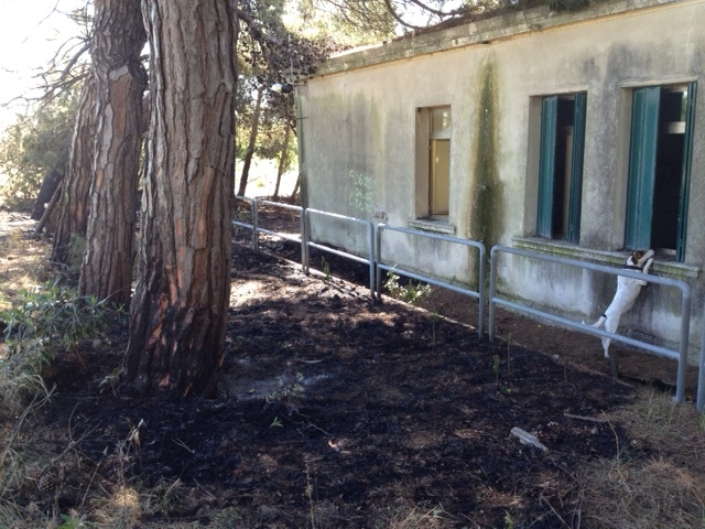 abandoned hospital venice ospedale al mare fire