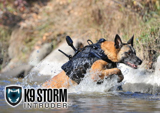 special-forces-dog-K9-storm-intruder-4