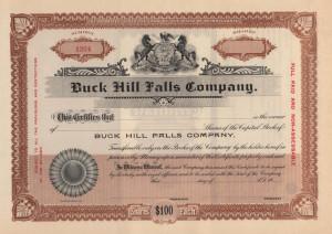 Buck-Hill-Falls-Company-stock-certificate