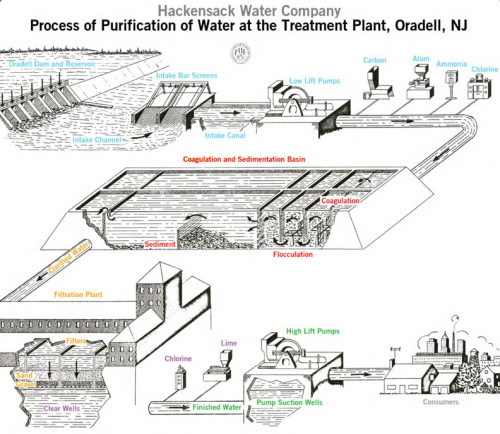 Hackensack Water Company's Purification Process