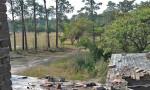 Croatan Cottage deterioration Overhills
